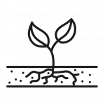 Fertilisation (engrais et compost)